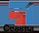 Cessna Icon